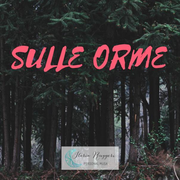 SULLE ORME